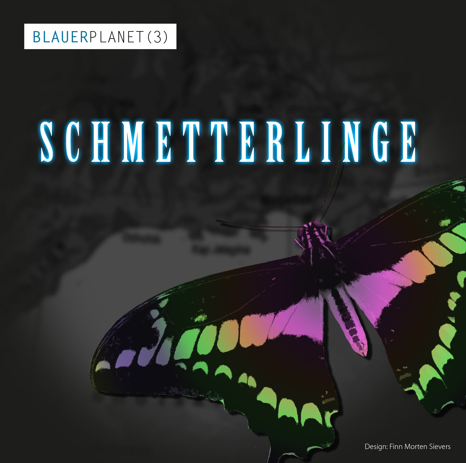 Blauer Planet 03 Schmetterlinge