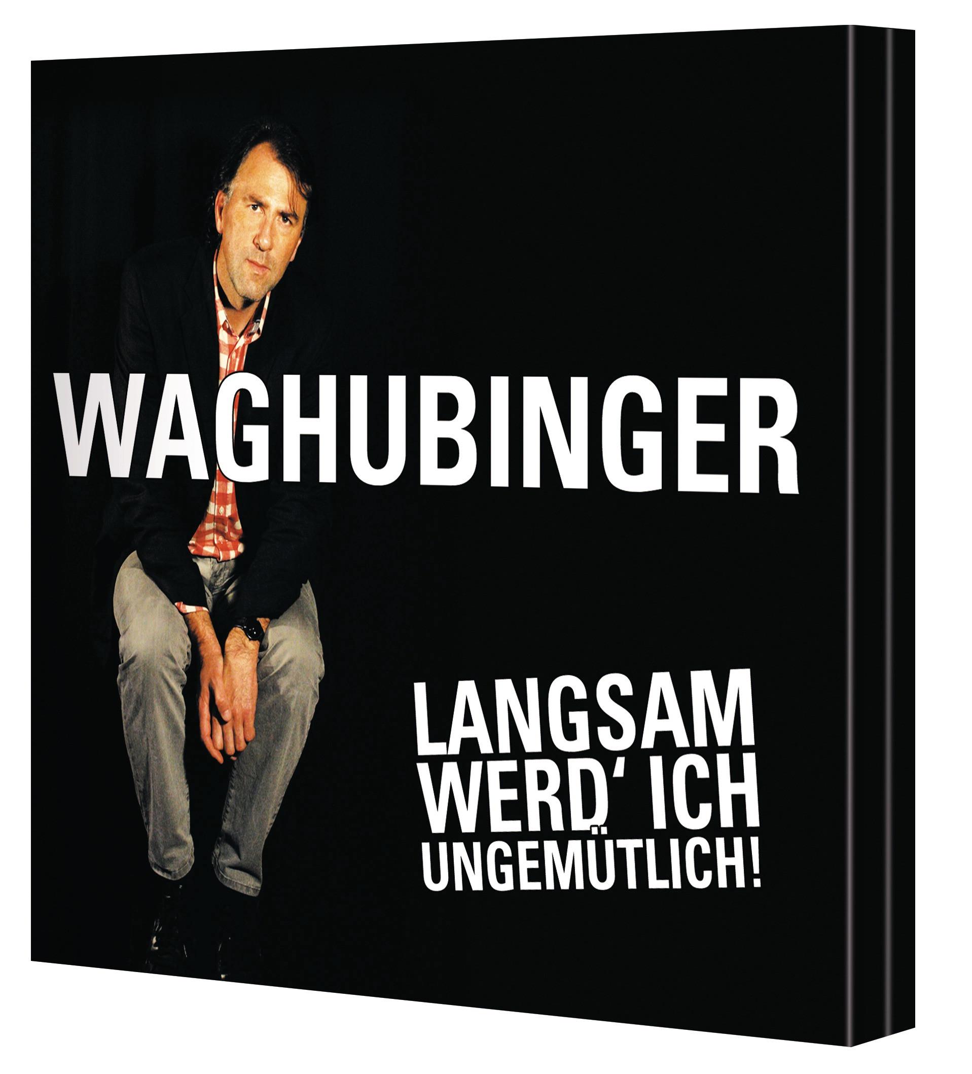 Stefan Waghubinger - Langsam werd' ich ungemütlich