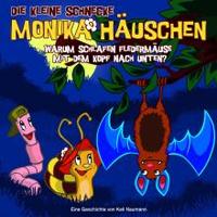 Monika Häuschen - 07: Warum schlafen Fledermäuse