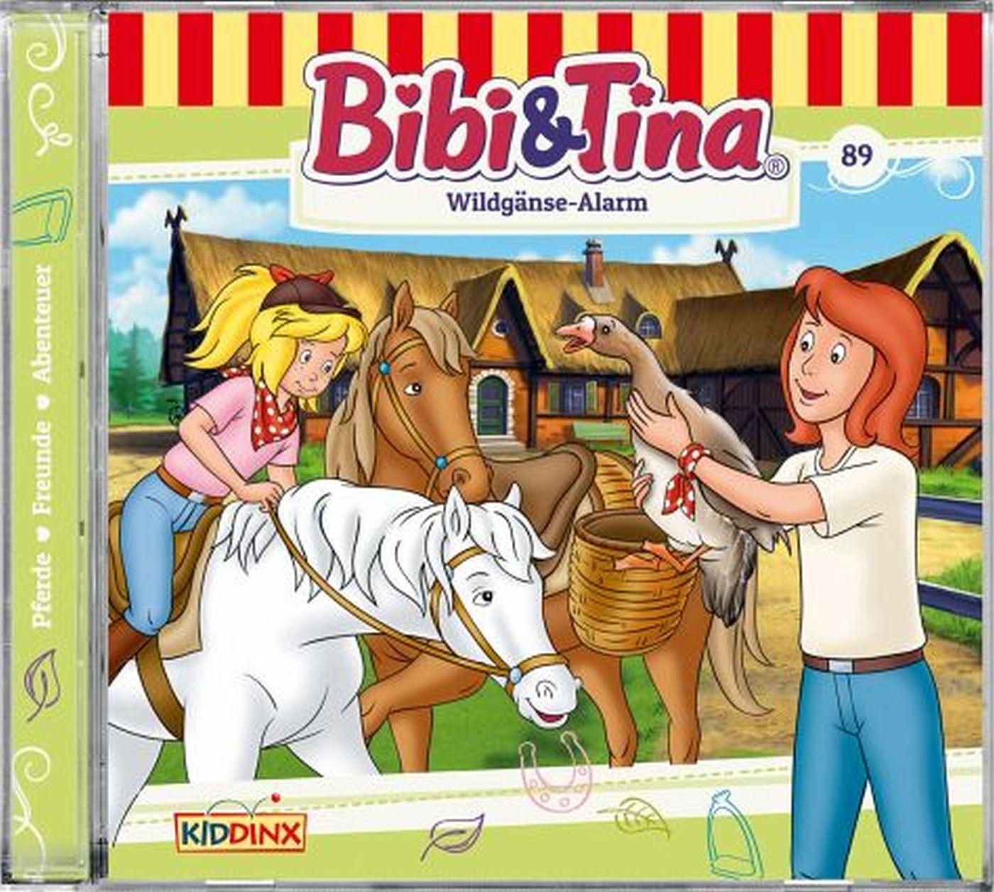 Bibi und Tina - Folge 89: Wildgänse-Alarm