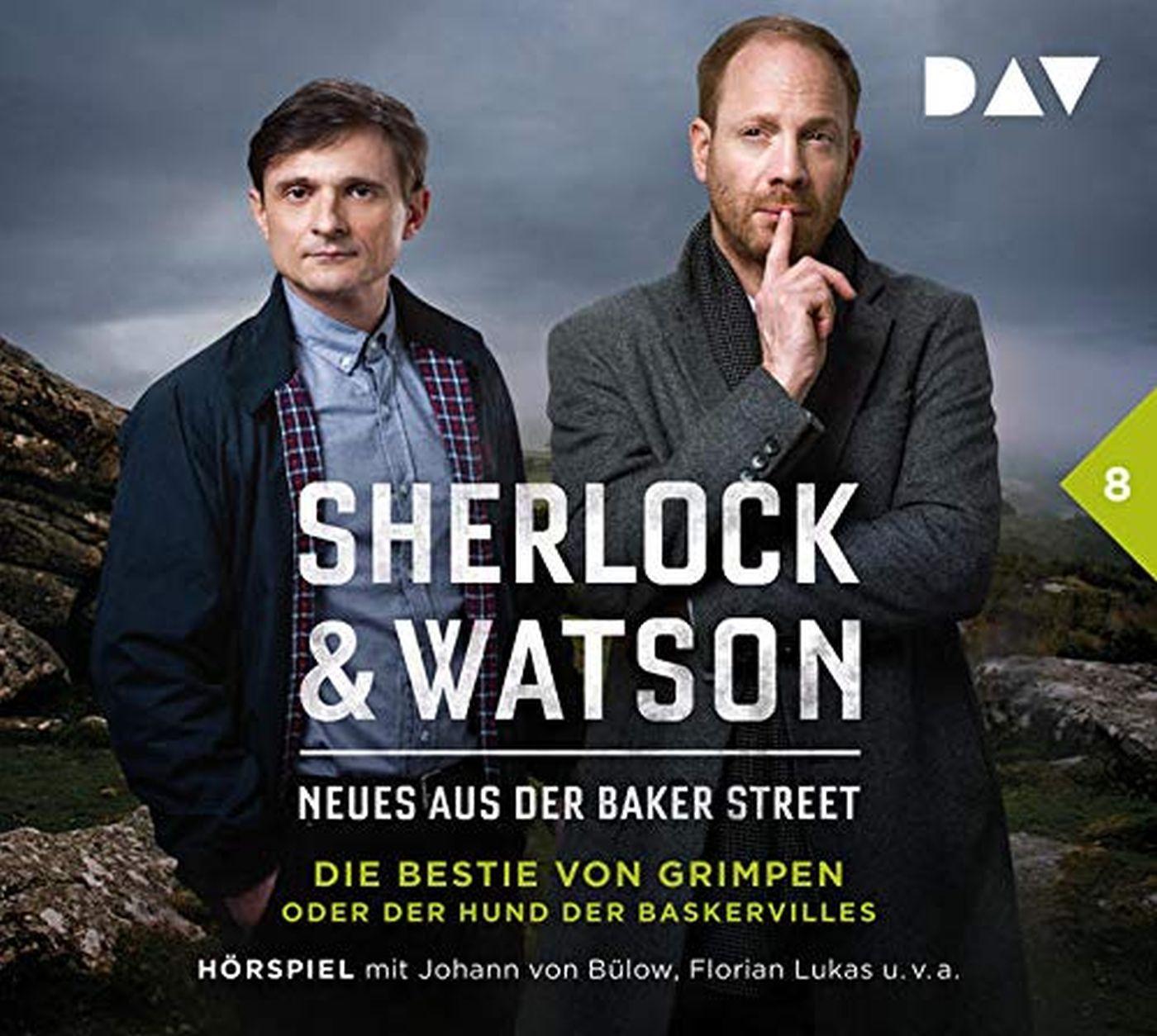 Sherlock & Watson – Neues aus der Baker Street: Die Bestie von Grimpen oder Der Hund der Baskervilles (Fall 8)