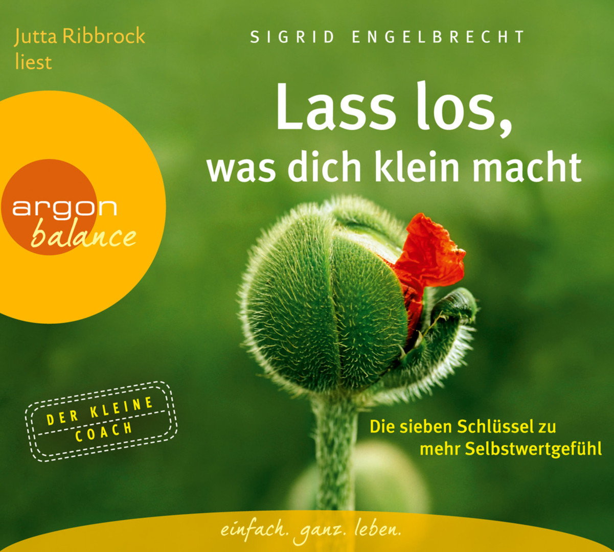 Sigrid Engelbrecht - Lass los, was dich klein macht