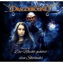 Dragonbound 18 Die Nacht gehört den Skolniks