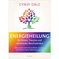 Energieheilung für Stress, Trauma und chronische Beschwerden