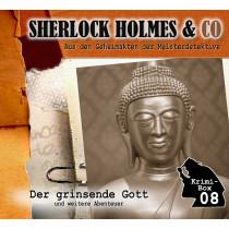 Sherlock Holmes und Co. Krimi-Box 8: mit den Folgen 22-24