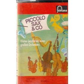 MC Fontana Piccolo Sax + Co Kleine Geschichte eines großen Orche