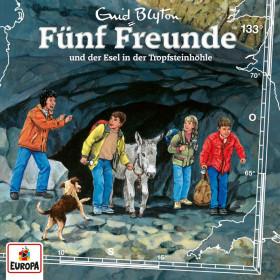 Fünf Freunde 133 Fünf Freunde und der Esel in der Tropfsteinhöhle
