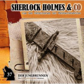Sherlock Holmes und Co. 37 - Der Jungbrunnen (2.Teil)