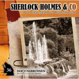 Sherlock Holmes und Co. 36 - Der Jungbrunnen (1.Teil)