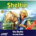 Sheltie - 1 - Wie Sheltie zu uns kam