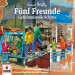 Fünf Freunde 31. 3er-Box: Geheimnisvolle Schätze (Folgen 101, 106, 114)