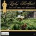 Lady Bedfort 23 und das Erbe der Greedlands
